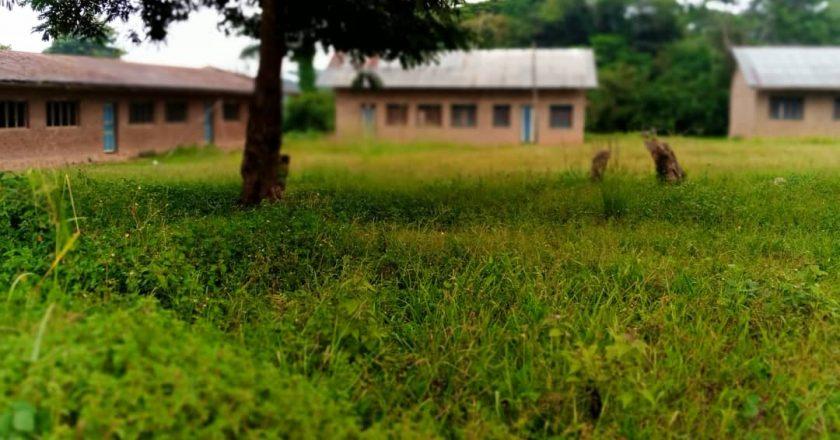 Ituri-EPST: l'enseignement sacrifié à cause de l'insécurité