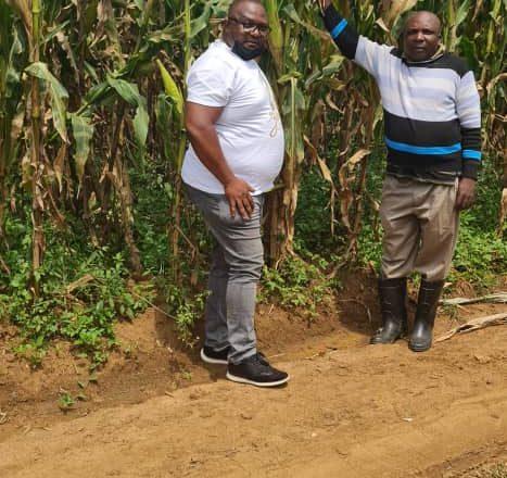 Beni: Nouvelle variété des maïs «ZM 625» disponible (Ir Paul Baraka)