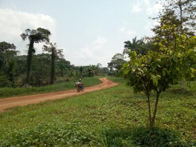 Insécurité à Beni : les activités sanitaires restent paralysées dans l'aire de santé de Samboko